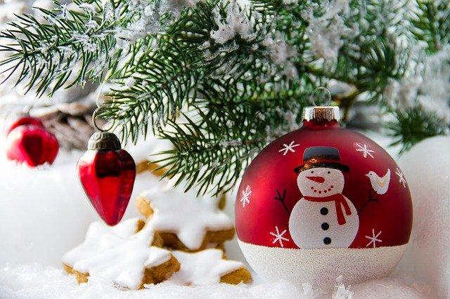 Commandez votre sapin de Noël à la Cagnotte des Mômes !