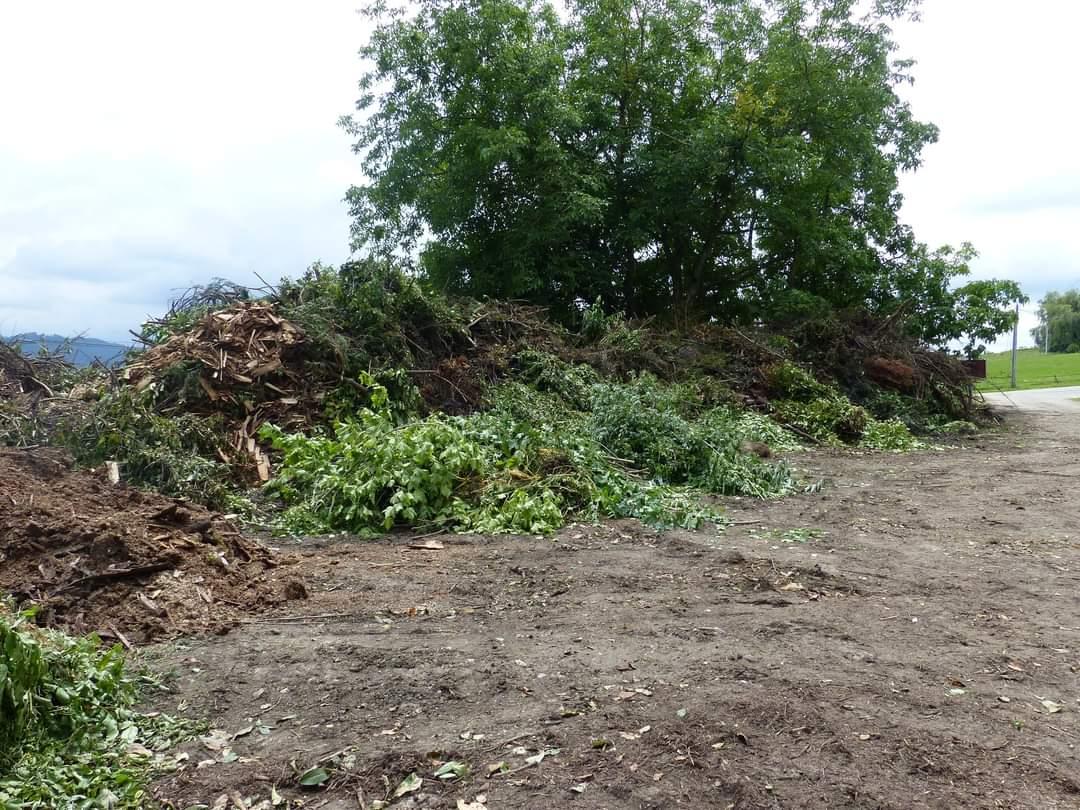 Saturation de la plateforme de déchets verts
