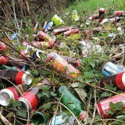 17 AVRIL : Ramassage des déchets à Dullin